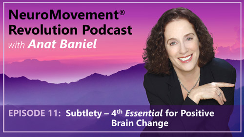 Episode 11 Subtlety 4th Essential for Positive Brain Change