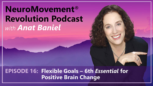 Episode 16 Flexible Goals 6th Essential for Positive Brain Change