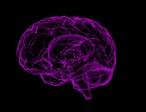 Transformational Recovery of Function After Stroke with Neuroplasticity Principles